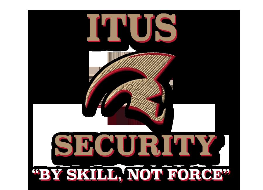 ITUS_LogoDropShadow